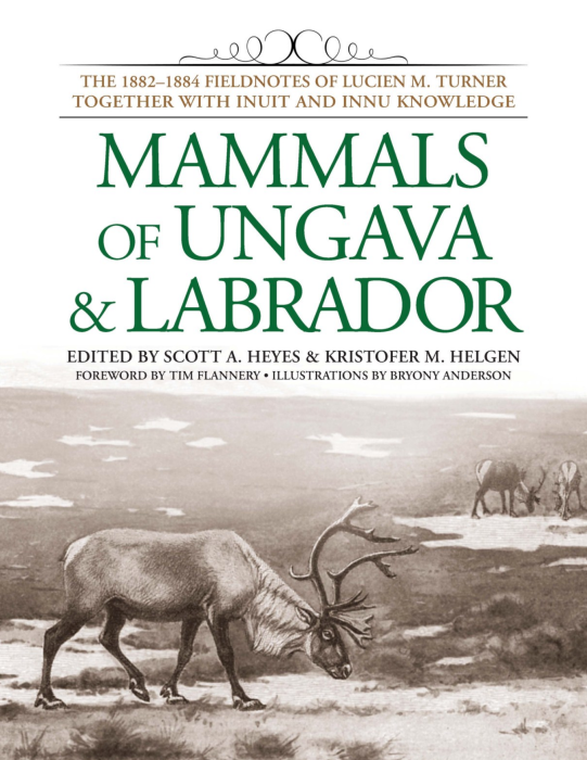 Heyes, S.A. and Helgen, K.M (eds). 2014. Mammals of Ungava and Labrador: The 1882-1884 Fieldnotes of Lucien M. Turner together with Inuit and Innu Knowledge, Smithsonian Institution Scholarly Press