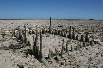 Aboriginal Fishtrap, Lake Alexandrina. Photo by Scott Heyes, March 2008